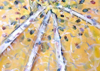 578. Yellow Birches