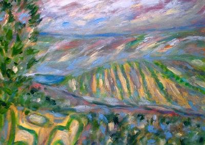 519. Scenic Vineyard